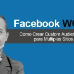 Como Crear Custom Audiences Website para Multiples Sitios Web